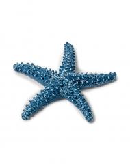 Grande étoile de mer bleue marine 6,5 cm