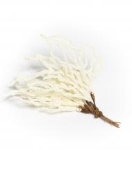 6 Coraux décoratifs blancs 19 cm