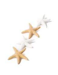 6 Etoiles de mer adhésives blanc et sable irisé 4,5 cm