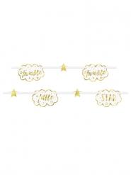 Guirlande carton Twinkle Twinkle Little Star dorée et blanche 2,13 m
