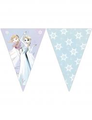 Guirlande 9 fanions La reine des neiges™ 2,3 m x 25 cm