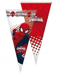10 Sachets de fête Spiderman™ 30 x 60 cm