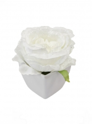 Rose artificielle blanche pailletée pot blanc 8 cm