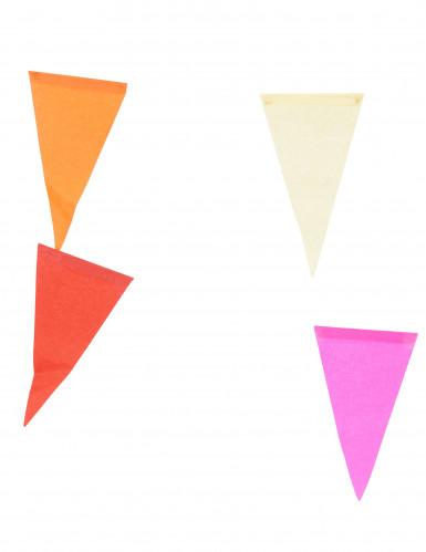 Guirlande à fanions multicolores 10 m-1