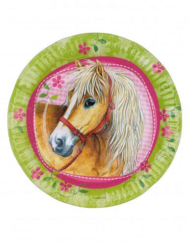 8 Assiettes Charmants chevaux