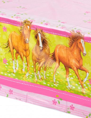 Nappe Charmants chevaux-1