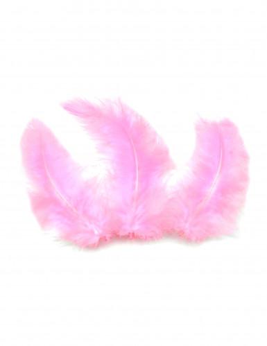 20 plumes de décoration roses