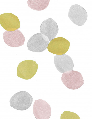 Confettis pétales de rose