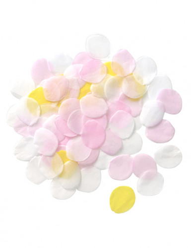 Confettis pétale de fleurs en papier 20 g-2