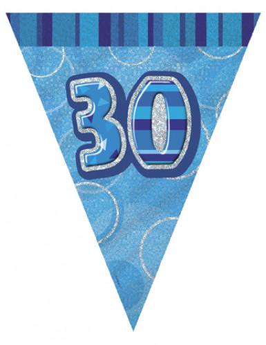 Guirlande Fanions bleue Age 30 ans