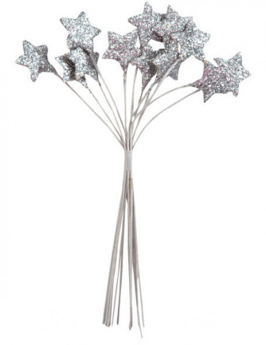 Petit bouquet 12 étoiles Argentées 11 cm