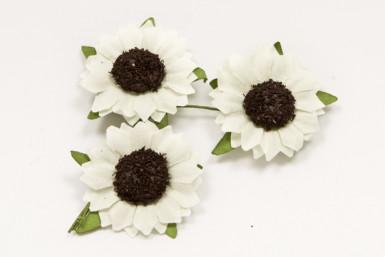 12 fleurs des champs blanche