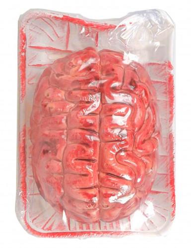 Cerveau ensanglanté Halloween