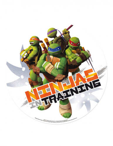 Disque azyme 20 cm Tortues  Ninja™