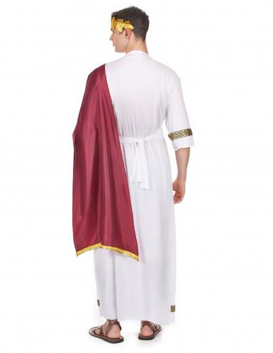Déguisement empereur Grec homme-2