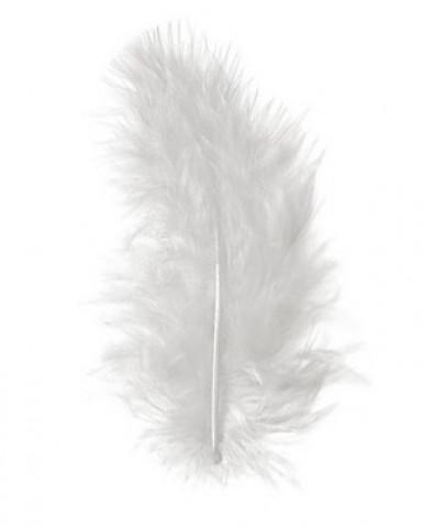 Plumes blanches de décoration 10 grammes
