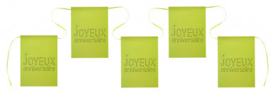 Guirlande fanions verts Anniversaire Chic