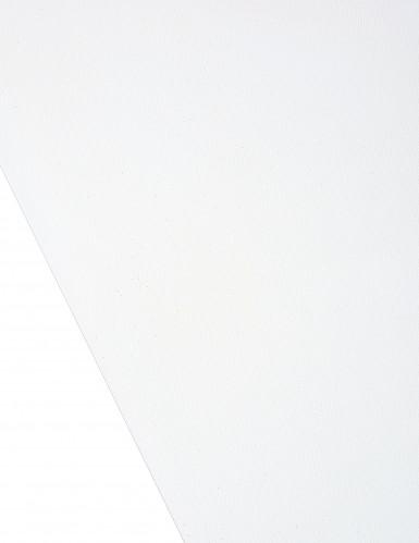Rouleau tulle uni ivoire 48 cm x 7 m-1
