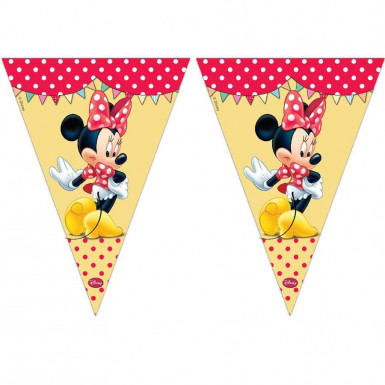Maxi Pack anniversaire Minnie™-3