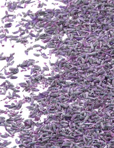 Sachet fleurs de lavande naturelles 1kg