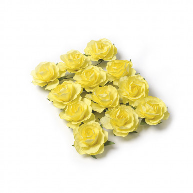 12 Roses à piquer jaunes