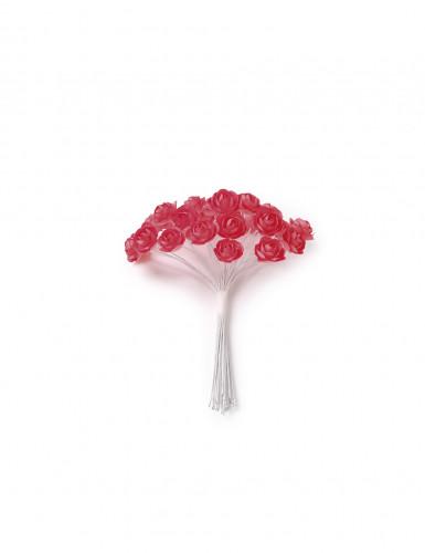 24 Mini roses corail sur tige