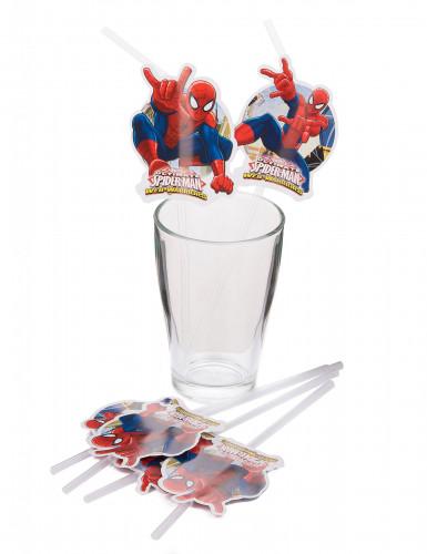 6 Pailles Spiderman™-1