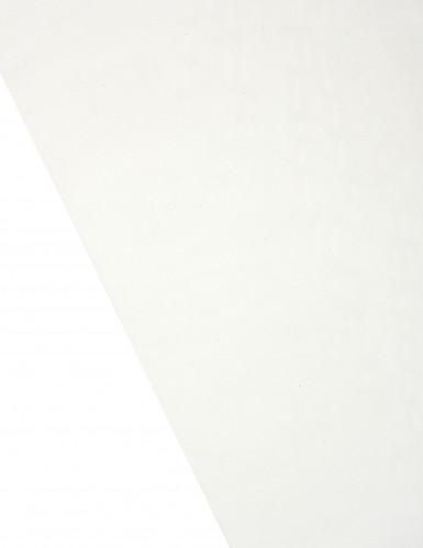 Chemin de table en organza brillant ivoire 28 cm x 5 m-1