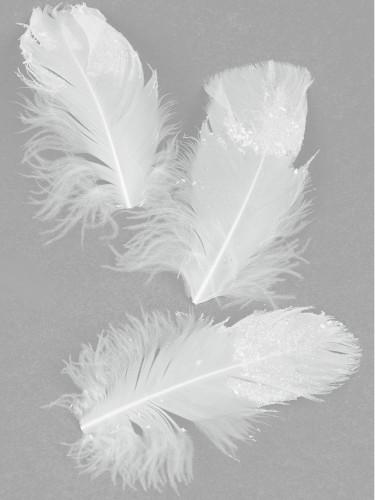 20 plumes pailletées déco - 9 cm
