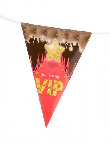 Guirlande fanions VIP 5 m-1