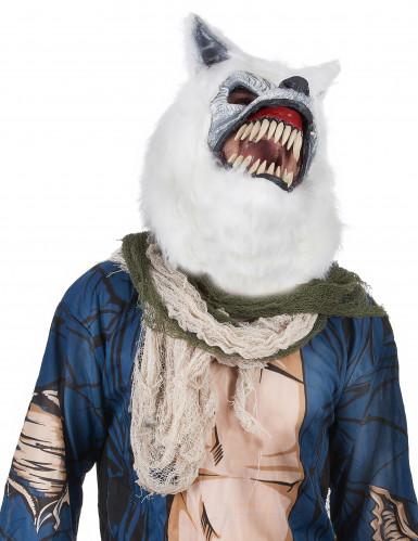 Masque Loup Blanc -1