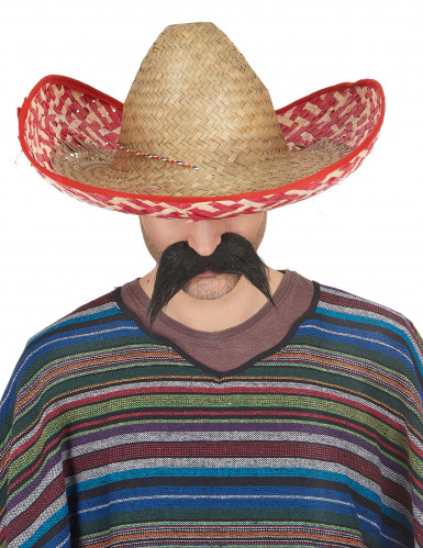 Sombrero Mexicain Adulte-1