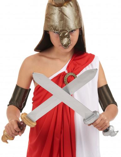 Kit 2 épées gladiateur Enfant en plastique-1