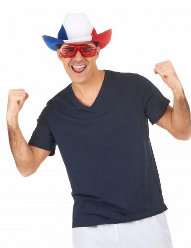 Chapeau cowboy supporter France adulte-2