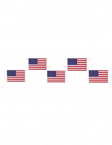 Banderole USA 5 m