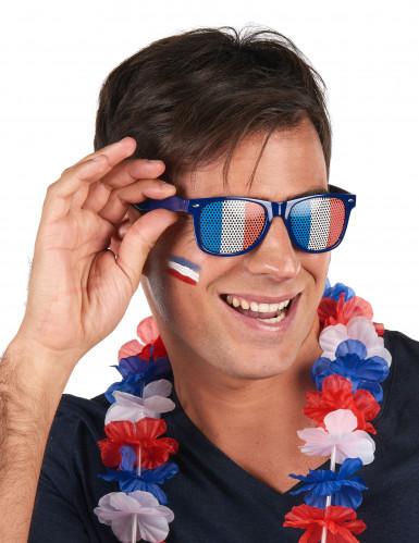 Lunettes supporter avec drapeau France adulte-1