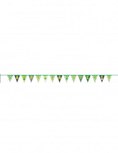 Guirlande fanions Happy St Patrick 4,26 mètres-1