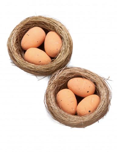 2 Petits nids avec oeufs
