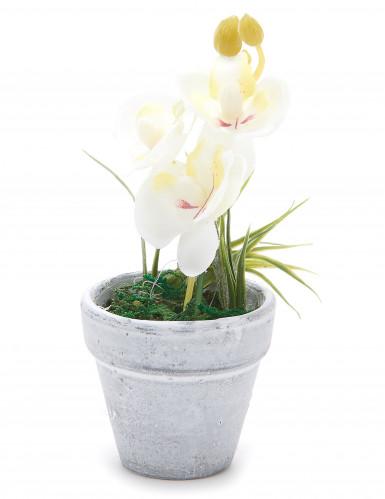 Petite orchidée artificielle blanche