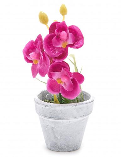 Petite orchidée artificielle fuchsia
