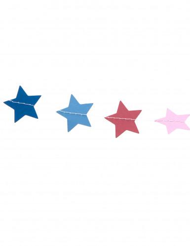 Mini guirlande petites étoiles multicolores 3 m-1