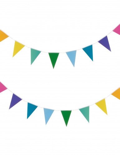 Guirlande petits fanions multicolores 2 m