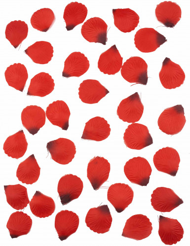 100 Pétales de rose en tissu rouge sombre-1