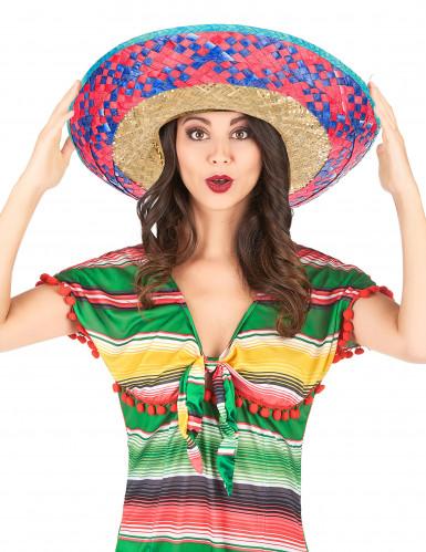 Sombrero Mexicain bordure rose et bleu adulte-1