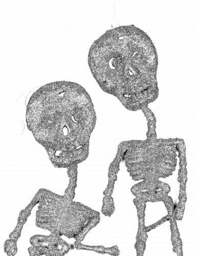 2 Squelettes argent à paillettes 18,5 cm-1