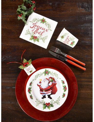 10 Assiettes  en carton Joyeux Noël 22.5 cm-2