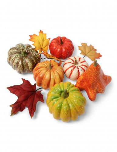 Assortiment légumes d'automne Premium