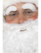 Lunettes Père Noël adulte