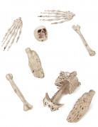 Sachet d'os de décoration