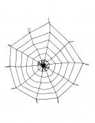Toile araignée élastique avec araignée